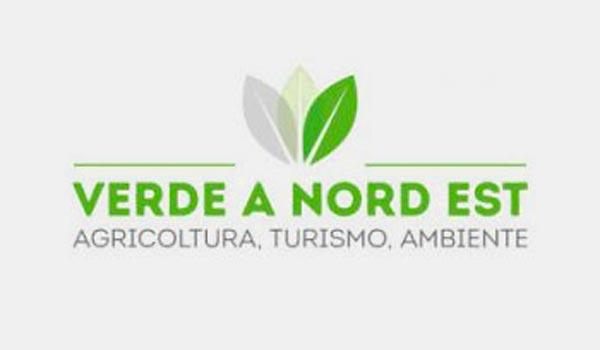 Verde-Nordest-logo