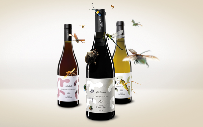 Etichette-vino-Caiaffa1